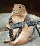 Armed groundhog