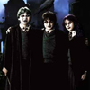 harry potter gothic trinity