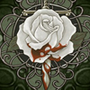 white blood rose