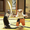 Cat fight