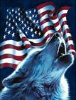 Wolf and Flag