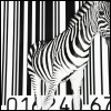 Barcoded Zebra